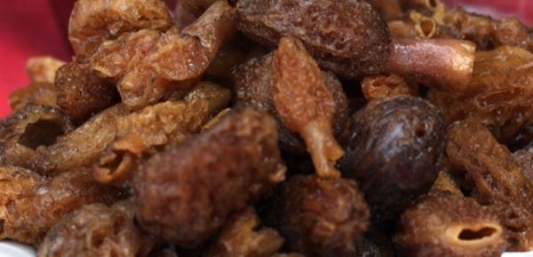 Công dụng của nấm bụng dê